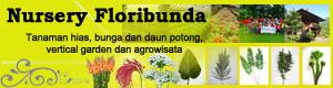 Floribunda Banner