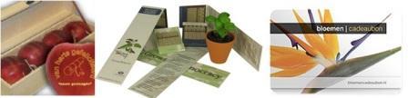 Inovasi florikultura