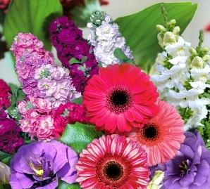 Produk Wahana Kharisma Flora