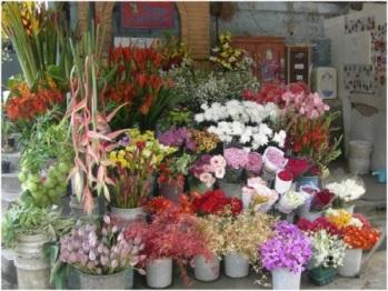 produk florikultura