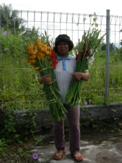 Working in floriculture in Indonesia