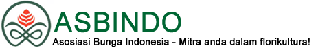 Logo Asbindo
